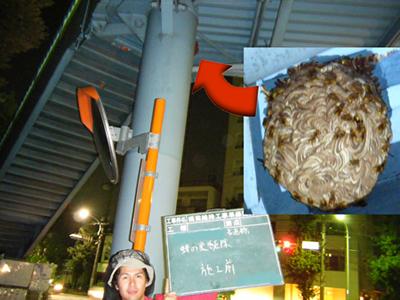 歩道橋の下の蜂の巣